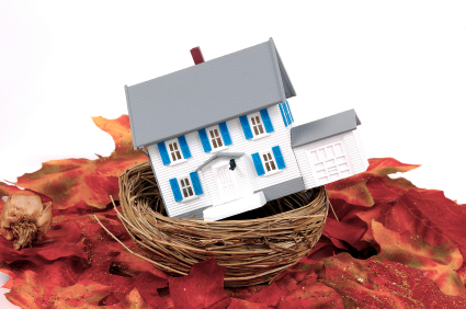 Miniature House in a Nest.  Home Equity Concept.